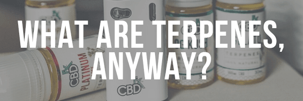 What Are Terpenes, Anyway?